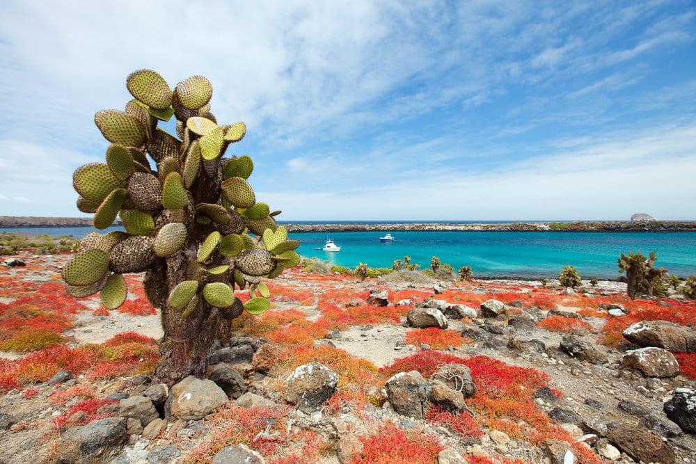 Beautiful Exotic Islands