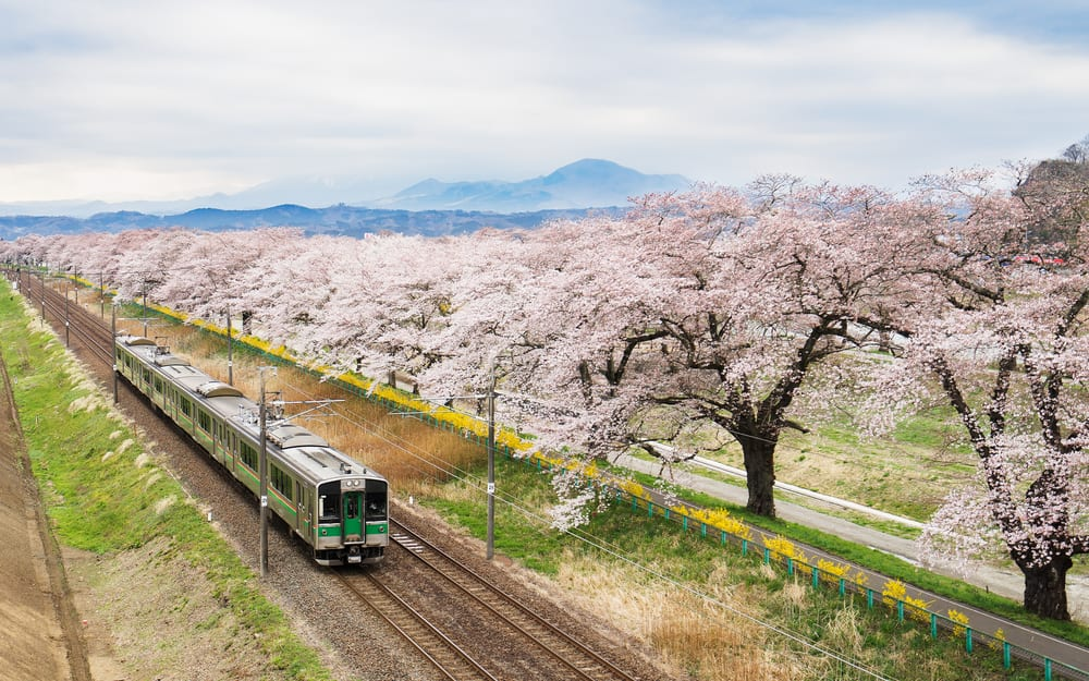 Unusual things about Japan