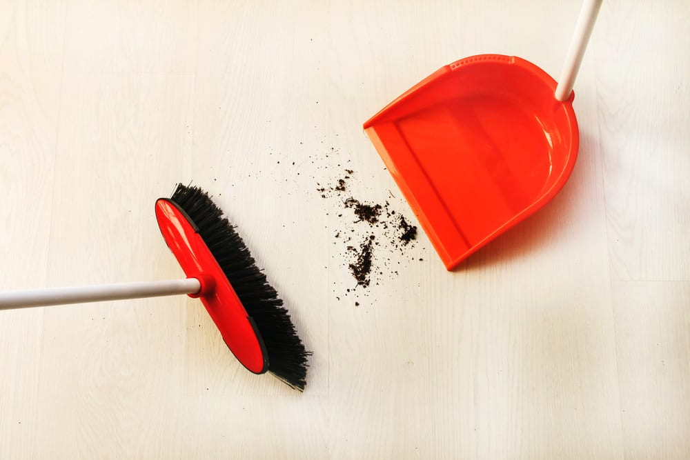 Everyone Must Have in their Home