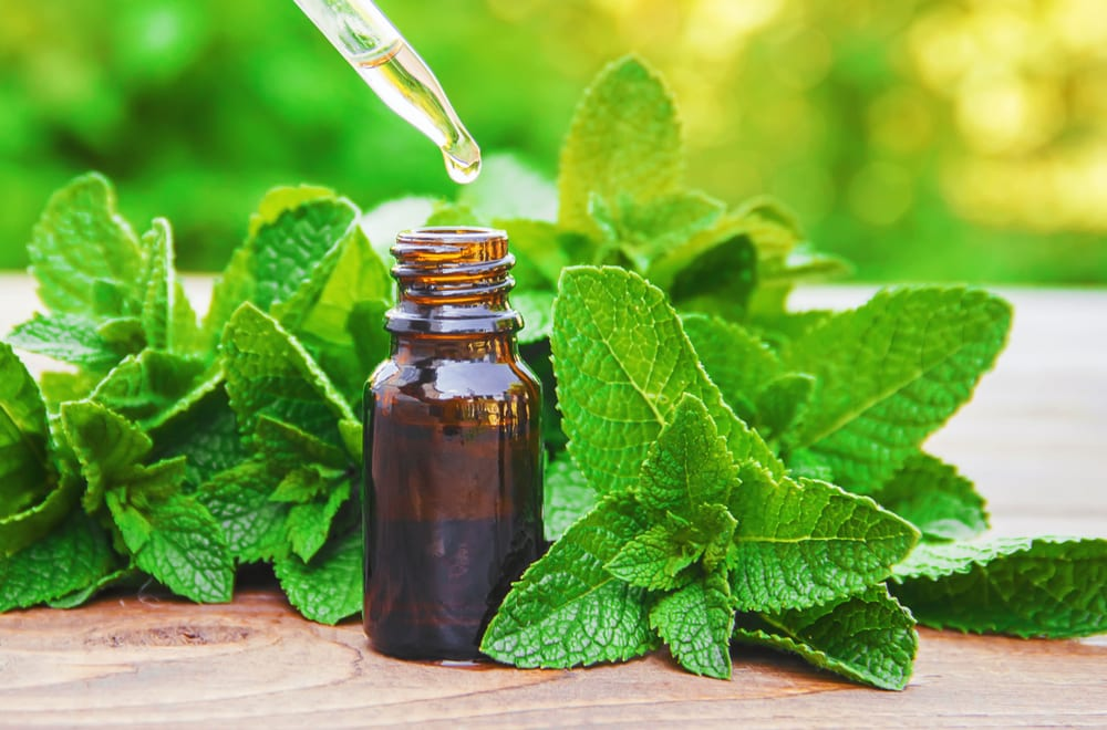 Ways to Achieve Pouty Lips - peppermint oil