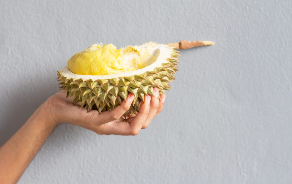 Smelly Foods that are Worth Eating-durian