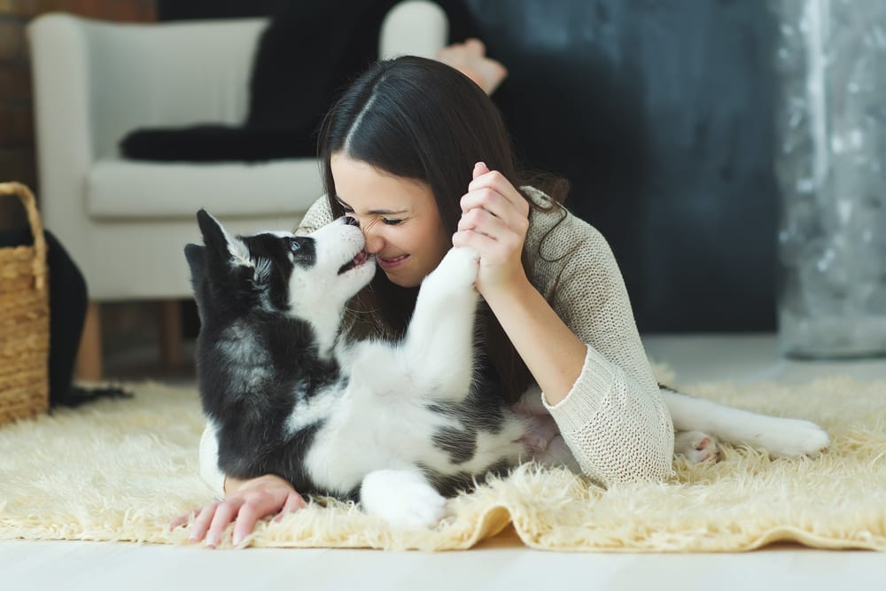 Things to do When Lonely - Share the love with non humans