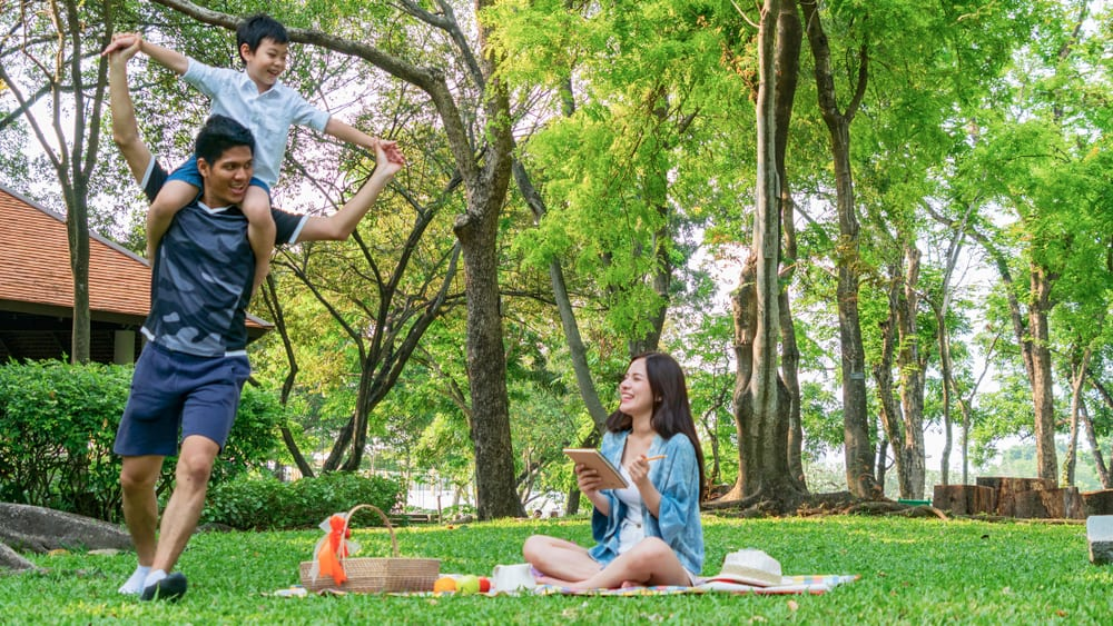 Activities for Fathers Day - Backyard Picnic