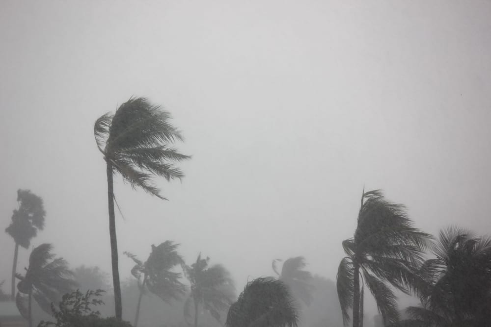 Worst Natural Disasters - Cyclone Nargis