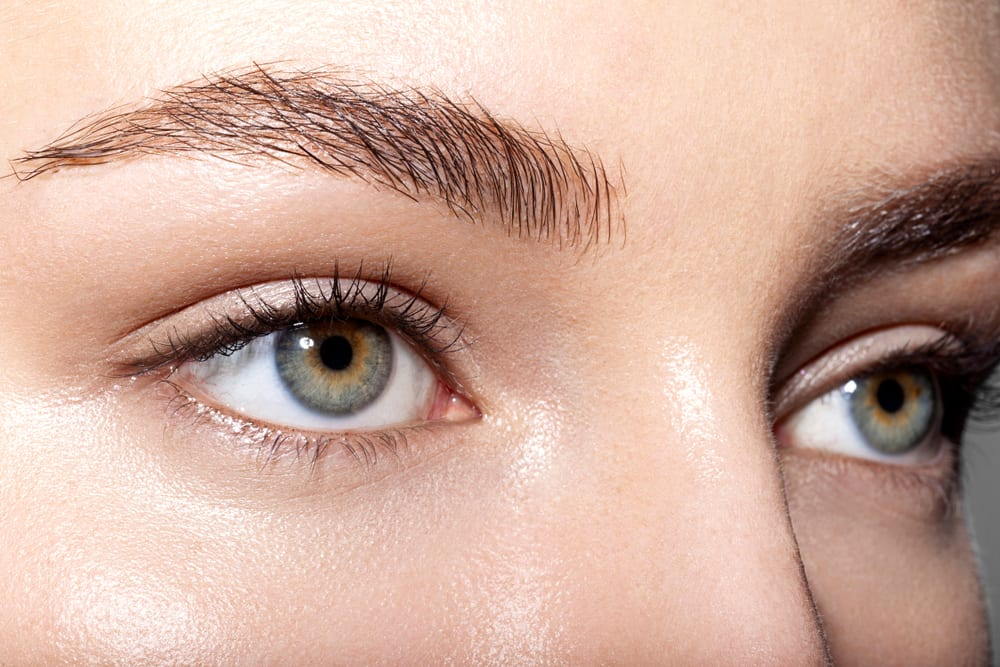 Utilizing mouse skin in shaping their eyebrows