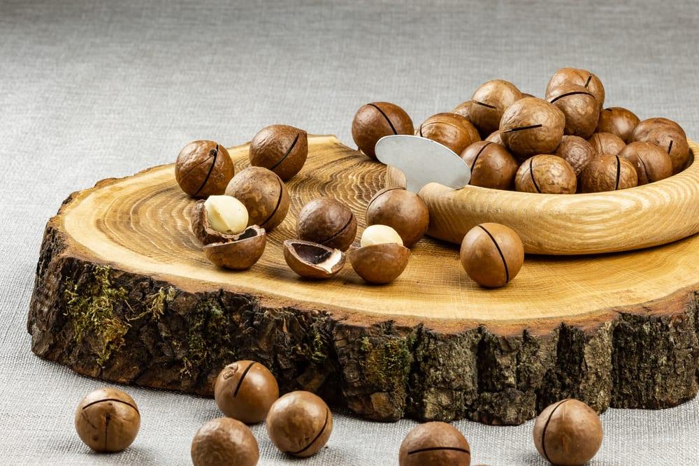 Healthiest Nuts - Macademia Nuts