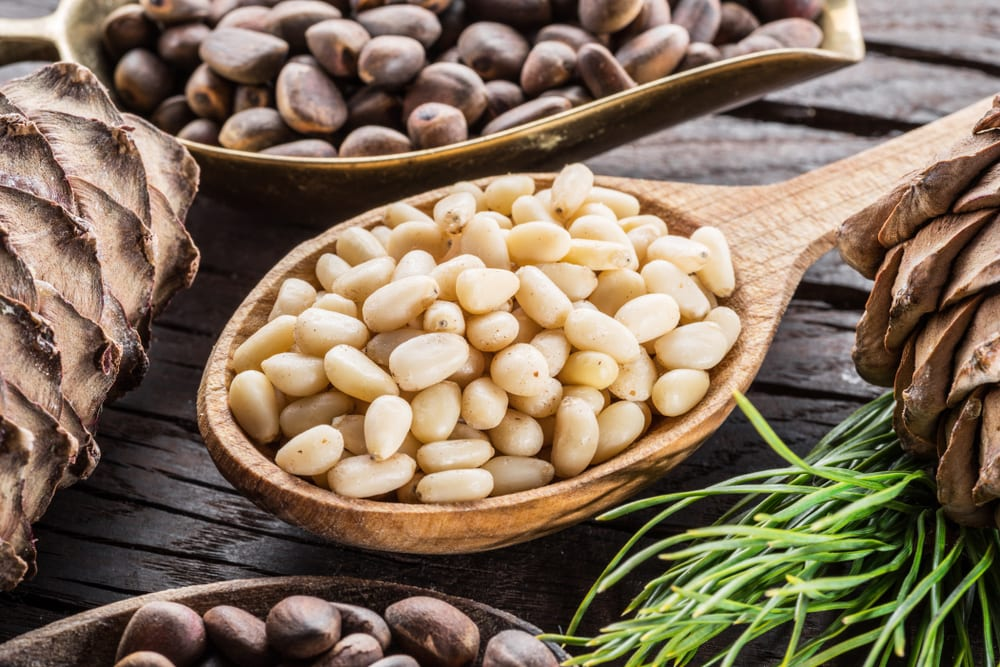 Healthiest Nuts - Pine Nuts